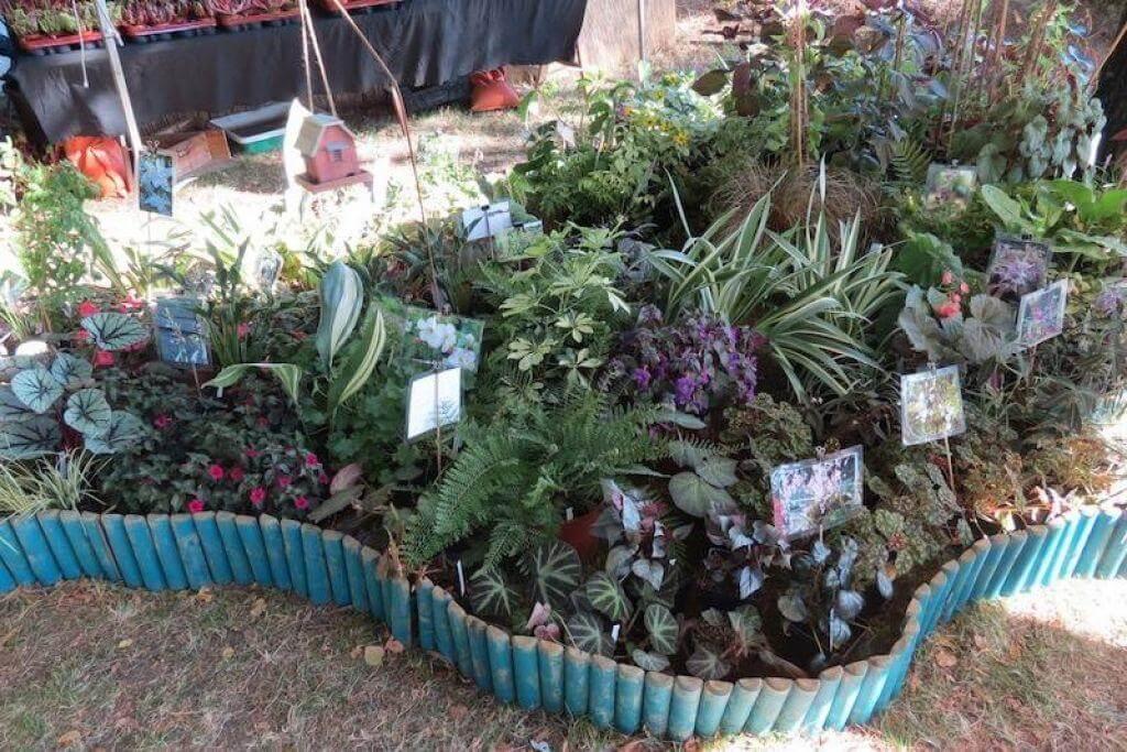 Vivaio Un quadrato di giardino