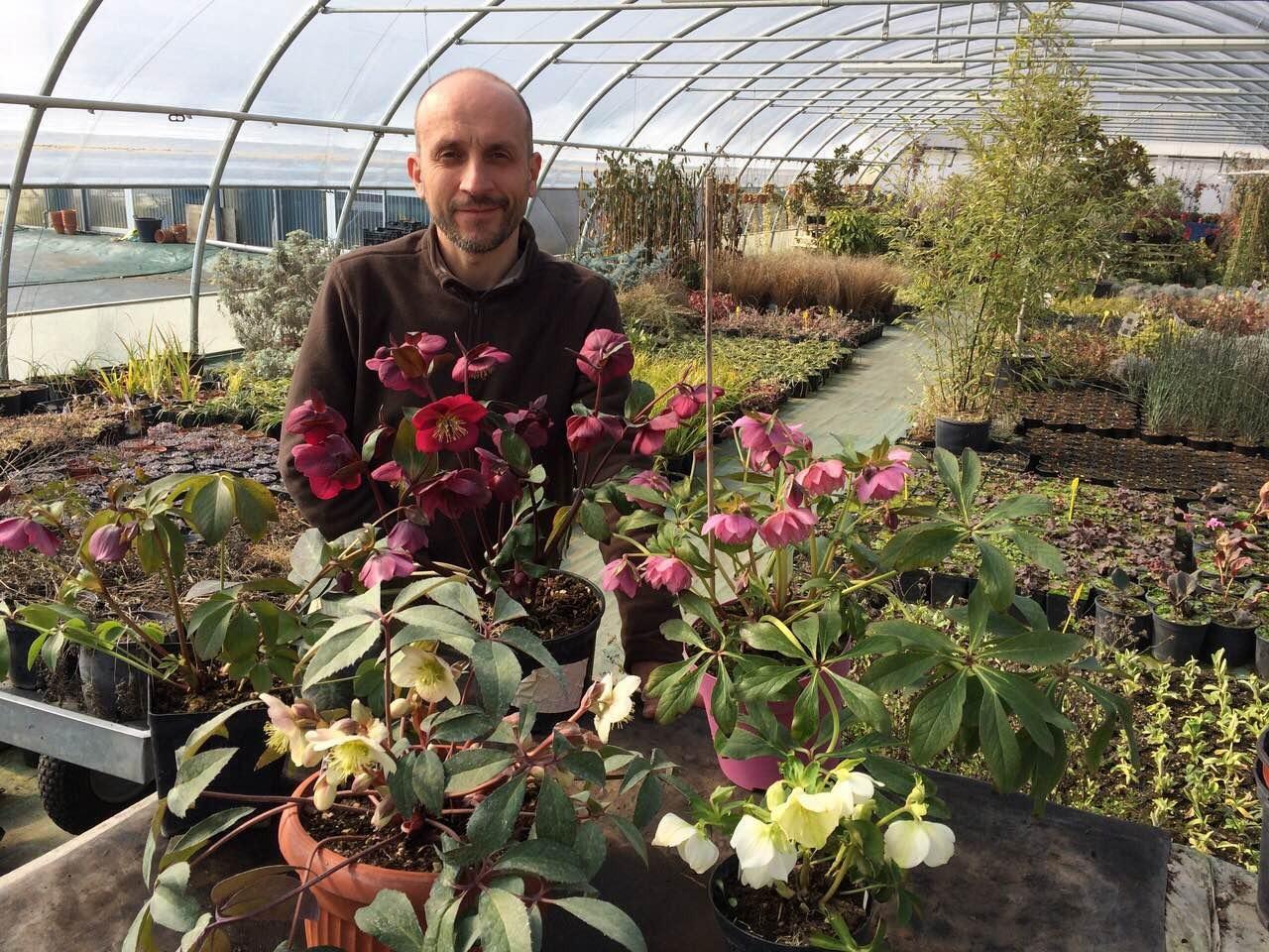 Vaso grande per le nostre piante perenni