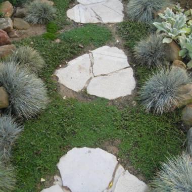 Aiuola con sassi o vialetto da giardino