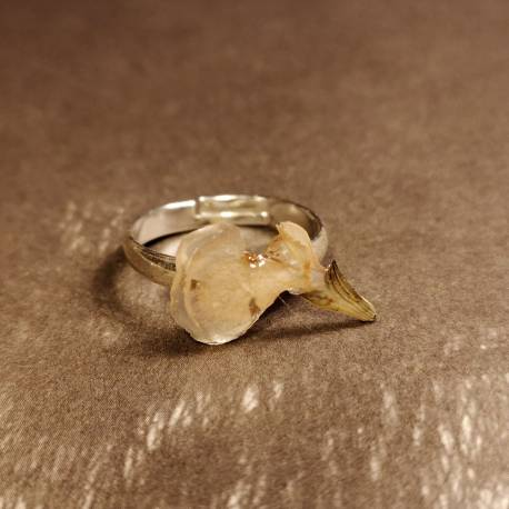 Ring with real salvia flower