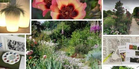 Vivaio on line un quadrato di giardino piante perenni for Progettazione giardini on line